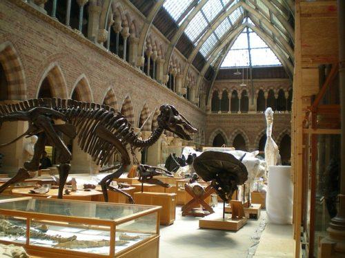 海外の博物館