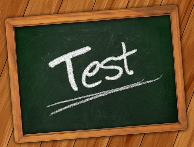 インター入学試験対策