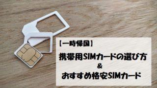 【一時帰国】携帯SIMカードの選び方とおすすめ格安SIM
